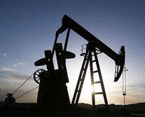 Brent petrol nedir? 16 Aralık Çarşamba Brent petrol fiyatı ne kadar oldu?