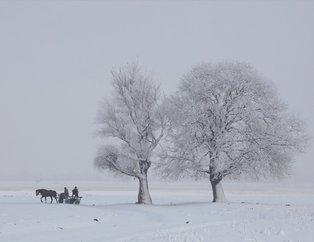 Türkiye donuyor! Yurttan kar manzaraları