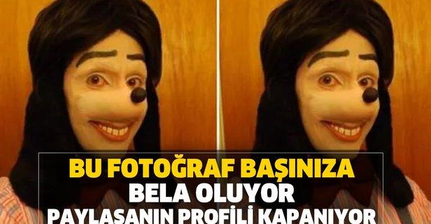 Instagram'da profil fotoğrafı yapılamayan fotoğraf!