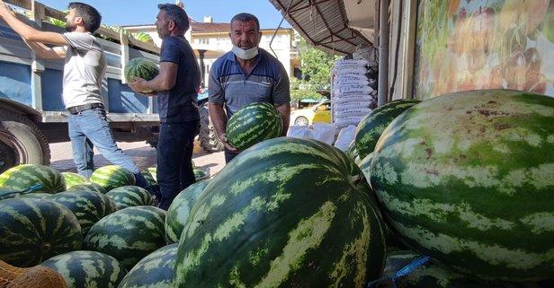 Tunceli'de organik karpuz üretildi: Hıdıroz