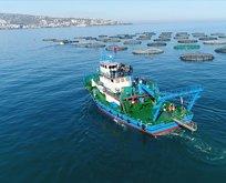 Trabzon'dan 18,4 milyon dolarlık ihracat!
