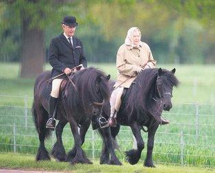 At koşar Kraliçe kazanır
