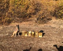 Bitlis'te 100 kg patlayıcı madde ele geçirildi!