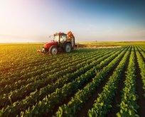 Tarım ÜFE Kasım ayında artışa geçti!