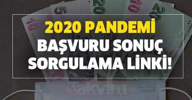 2020 Pandemi başvuru sonuç sorgulama linki!