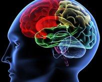 Bu yiyecekler beyin geliştiriyor!