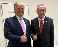 Amerikan WSJ: Trump,  Erdoğan'a güvence verdi