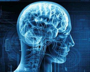 İşte beyin yaşı hesaplama testi