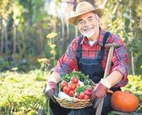 Çiftçiye tarsim güvencesi