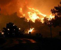 Menderes'te yangın çıkmasına neden olmuştu! Tutuklandı!