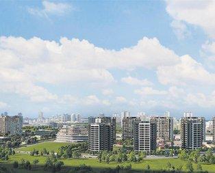 İstanbul'un yeni yıldızı Başakşehir