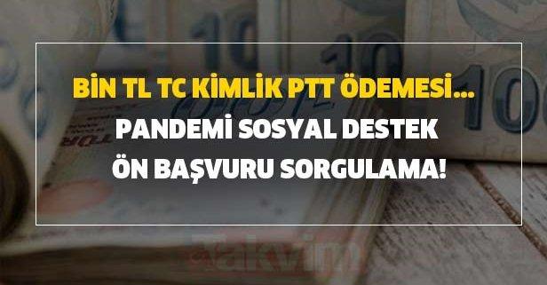 Bin TL TC kimlik PTT ödemesi... Pandemi sosyal destek ön başvuru sorgulama!