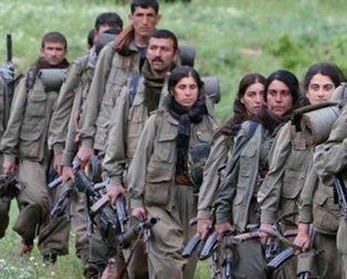 Köşeye sıkışan YPG yine algı operasyonu peşinde!