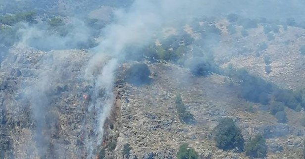 Muğla Dalaman'da orman yangını!
