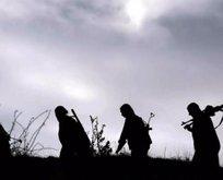 PKK'lılar erzak vermeyince kaçırdığı köylüyü öldürdü