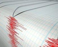 O ülkede korkutan depremler