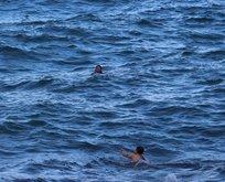 Su yüzeyinde fark ettiler! Komutan yanına hiçbir şeyini almadan...