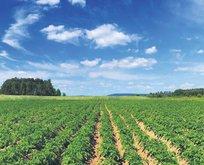 Garantili tarımla 40 bin kişiye iş
