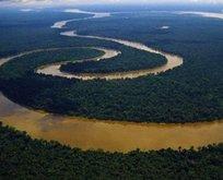 Nil nehri nereye dökülmektedir?