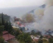 Mersin'de ormanlık alanda çıkan yangın kontrol altında!