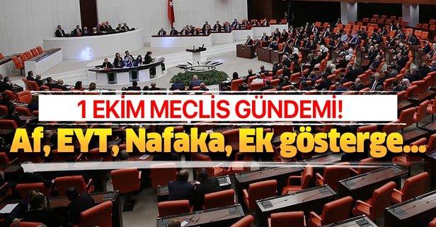 1 Ekim Meclis gündemi! Af, Nafaka ve EYT çıkacak mı?