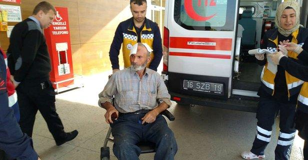 Kabak çalmaya çalışan hırsız yaşlı adamı yaraladı