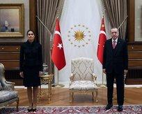Başkan Erdoğan'dan üst üste önemli kabuller