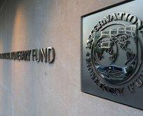IMF kırbaçlıyor