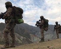 Bakan açıkladı! Türkiye'deki PKK'lı terörist sayısı