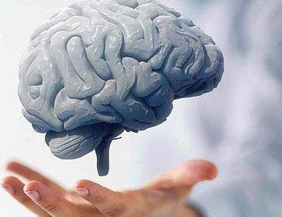 Beyne zarar veren yiyecekler nelerdir? İşte beyni tüketen besinler