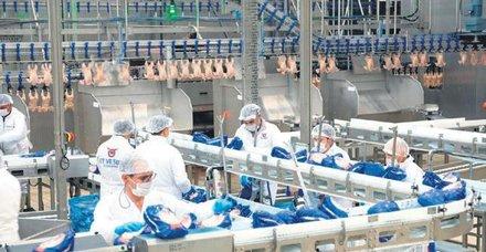 Et ve Süt Kurumu'ndan yeni ürünler