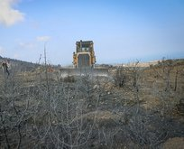 Hatay'daki orman yangınlarının ardından harekete geçildi