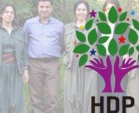 HDP'li Demirtaş, Millet İttifakı'nın adayı olmak istiyor