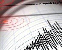 O ülke 7.1'lik depremle sallandı