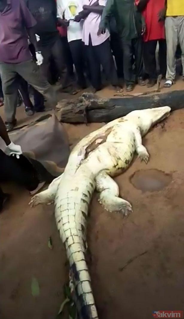 Zimbabve'de akıllara durgunluk veren olay! Timsahın karnından...
