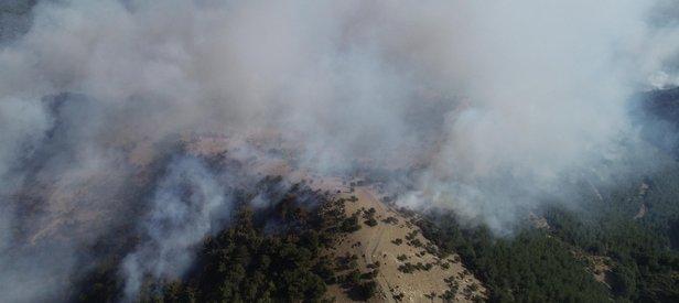 Son dakika: İzmir'de orman yangını sürüyor! İki mahalle boşaltıldı