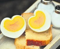 Hafızaya yumurta