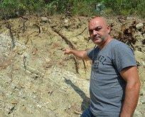 Yol kenarında kemik parçaları bulundu!