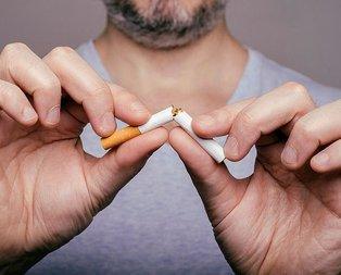 Sigara kısır eder mi?