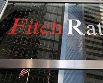 Fitch: Toparlanma devam edecek