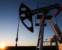 Brent petrolde hareketlilik