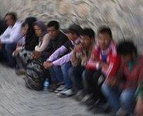 Edirne'de 134 düzensiz göçmen yakalandı