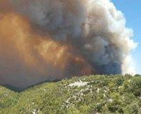 Antalya Manavgat'ta yangın felaketi!