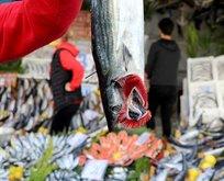 Sınır kentimize gelen turistler kasa kasa o balıktan alıyor