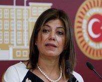 HDPKK'dan Arınç'ın Demirtaş sözlerine destek