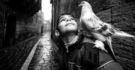 Fotoğraflarıyla tarih yazan Ara Güler'in 1.ölüm yıl dönümü...