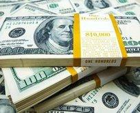 Dolar kaç TL? Euro bugün ne kadar oldu? 25 Ocak CANLI döviz kurları!