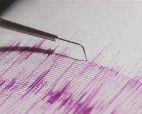 Alaskada 8,2 büyüklüğünde deprem!