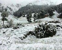 Mayıs ayından kar sürprizi