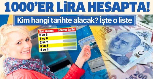 1000'er lira hesapta